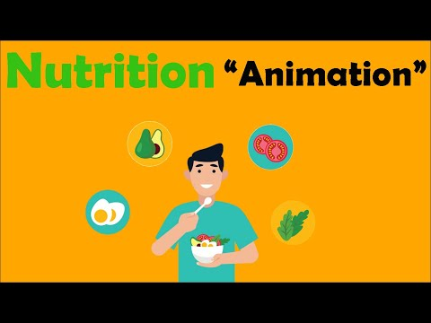 NUTRITION (Biology Animation)