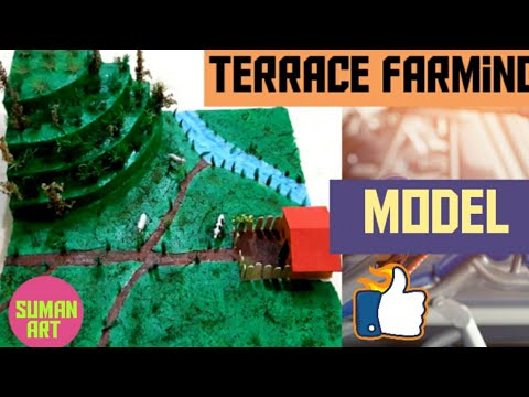How to make a terrace farming model