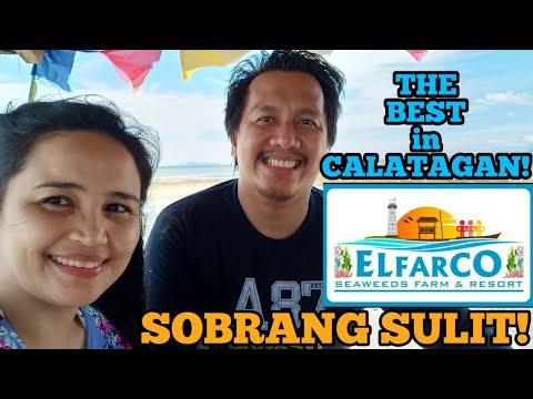 The ELFARCO SEAWEEDS FARM & BEACH RESORT EXPERIENCE (Calatagan, Batangas, Starfish Island, & More!)