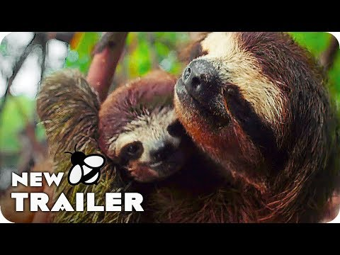 Earth - One Amazing Day Trailer (2017) Nature Documentary Movie