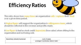 Bee Business Bee Ratio Analysis Tutorial (AQA BUSS3)