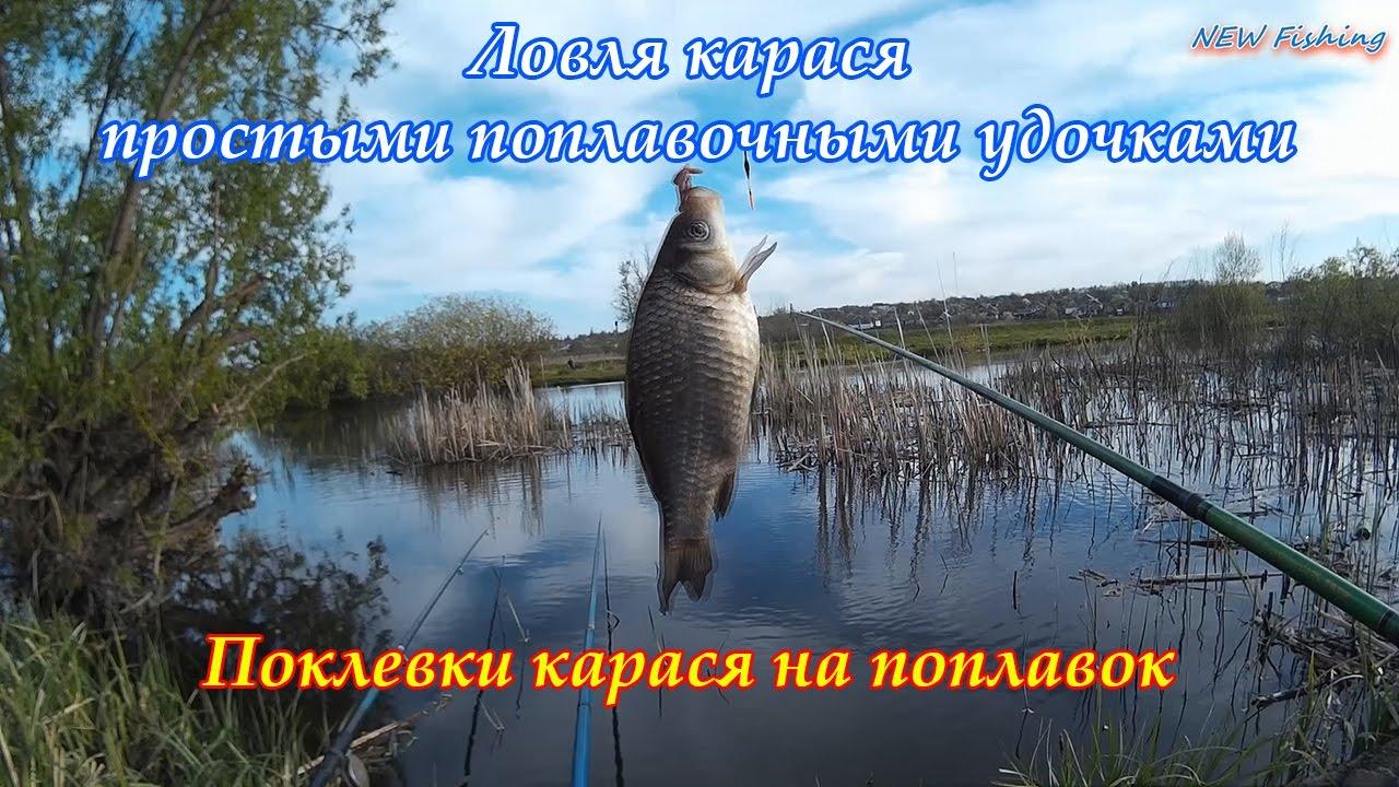 рыбалка на карася поплавочной удочкой поклевки весной
