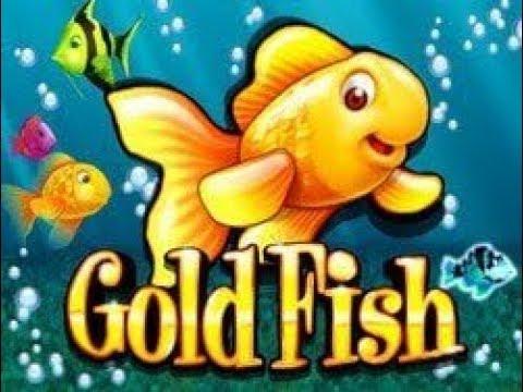 Casino Games Golden