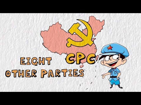 What are the other political parties in China?