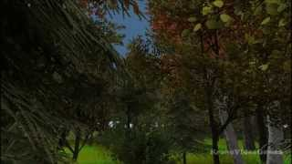 Tree Simulator 2013: Treeloaded Gameplay (PC HD)