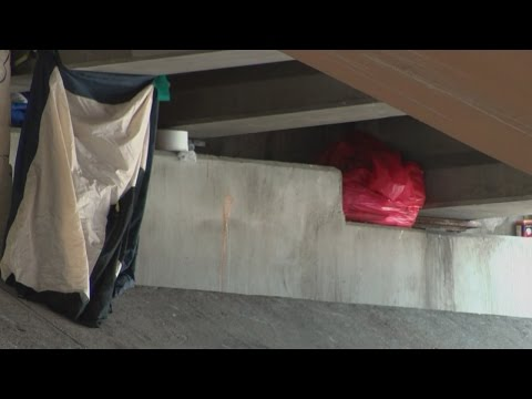 As homeless camps emerge, city says population has decreased