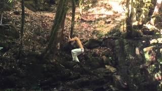 Фильм о диком звере, который живет в горах и тренируется капоэйра