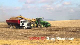 Potato Farming Outlook