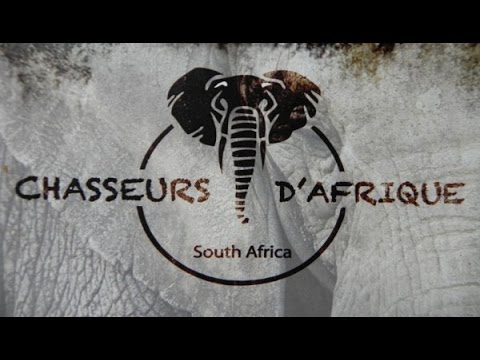 Chasseurs d'afrique