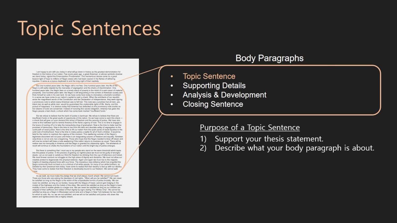 Essay Writing  Body Paragraphs  16 Topic Sentences