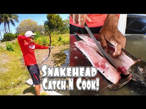 Snakehead Catch And Cook! Caught By BOW!
