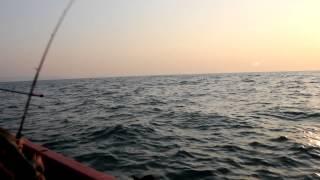 Рыбалка в ГОА(Группер 15 кг., 2013-02-13T19:04:53.000Z)