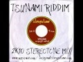 Download TSUNAMI RIDDIM 2K10 STEREOTONE MIX MP3 song and Music Video
