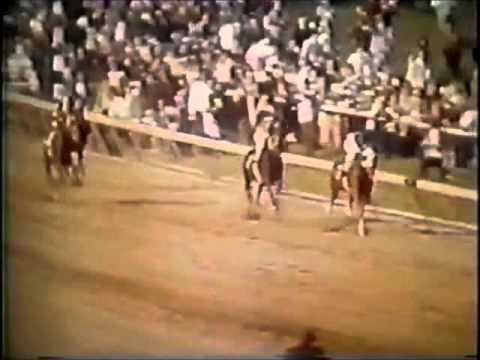 SECRETARIAT Greatest Race Horse Of All Time - Kentucky Derby Preakness Belmont Stakes 1973 Video