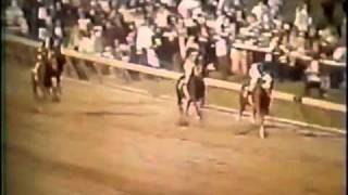 """SECRETARIAT"" Greatest Race Horse of All Time - Kentucky Derby Preakness Belmont Stakes 1973 Video"