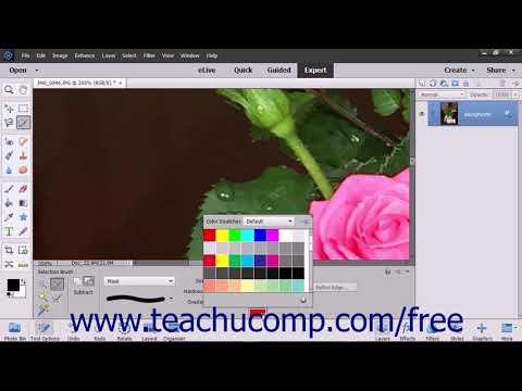 Photoshop Elements 2018 Tutorial The Selection Brush Tool Adobe Training