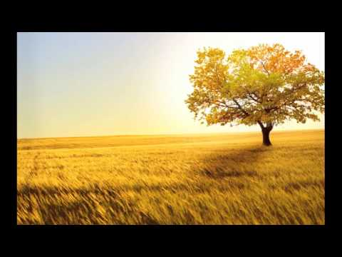 Kent Henry - I Sing Praises To Your Name (Classic Worship) (Audio)