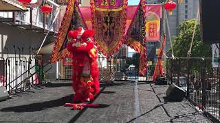 2019 Autumn Moon Festival: Leung's White Crane Lion Dance Baby Lion Routine