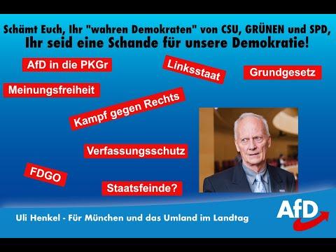 """""""Racial Profiling"""" im Landtag - Schämt Euch Ihr selbsternannten wahren Demokraten - Uli Henkel AfD"""