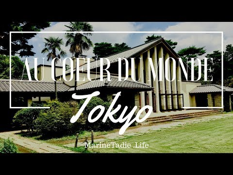 Tokyo Education #2