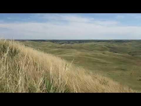 Exploring the ranch