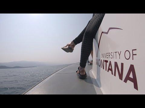 The University of Montana Convocation 2017