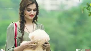 YE DIL PAGAL BANA BAITHA LOVE || Latest Hindi New Song || edit by(d.j)