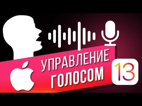 Как управлять голосом на IPhone в IOS 13? Управляем голосом БЕЗ ИНТЕРНЕТА и SIRI