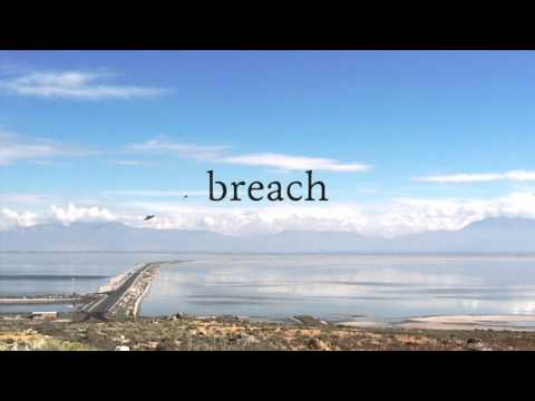 Download Breach by Karin Anderson