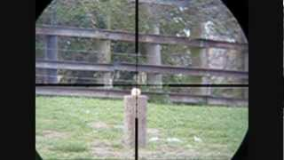 Air Arms Mpr Slow Motion scopecam shooting