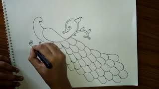 how to draw peacock drawing