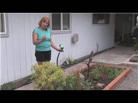Outdoor Gardening : How to Keep Outdoor Plants Watered While on Vacation