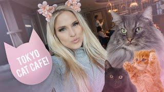 Video 🐺CUTEST CAT CAFE in Tokyo Japan! I'm never leaving download MP3, 3GP, MP4, WEBM, AVI, FLV Juli 2018