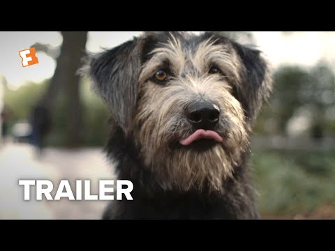 The Joe Show - Lady And The Tramp Trailer 2