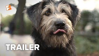 Lady and the Tramp Trailer #2 (2019) | Movieclips Trailers Video