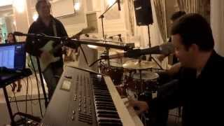 Vladimir Fotescu & Gonza Cover Band - Twist live at wedding party