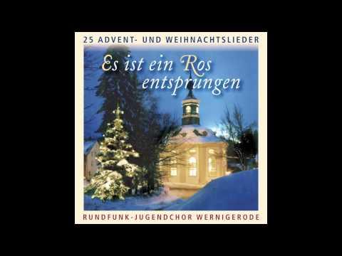 Es ist ein Ros entsprungen - 25 Advent- und Weihnachtslieder (das komplette Album)