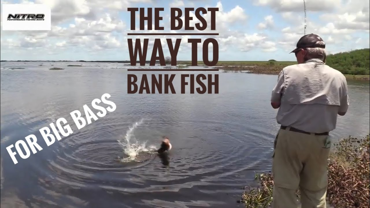 Fishing - cover