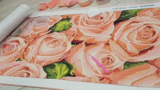 Прямой Эфир. Шикарные Розы. Процесс. Инна Даниш