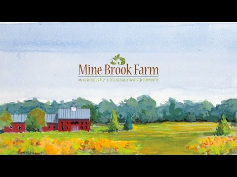 Mine Brook Farm