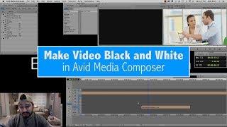 Avid Media Besteci Video Siyah ve Beyaz makyaj görüş alanı Öğretici