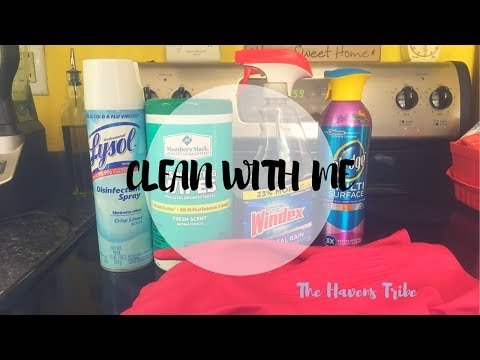 DISINFECTING MY HOUSE | CLEAN WITH ME | The Havens Tribe