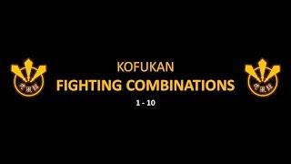 Fighting Combinations 1-10