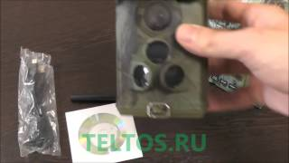 видео Фотоловушка Acorn LTL-6310WMG-3G