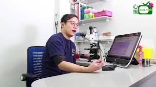 【心視台】香港 姚子祥獸醫-小動物的疾病處理方法講解