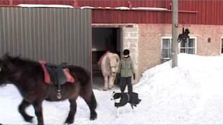 Vaellus Karjalohja Mustio Hestbakki