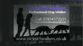 Nicks K9 Walkers Video - Professional Dog Walker Barnsley And Rotherham