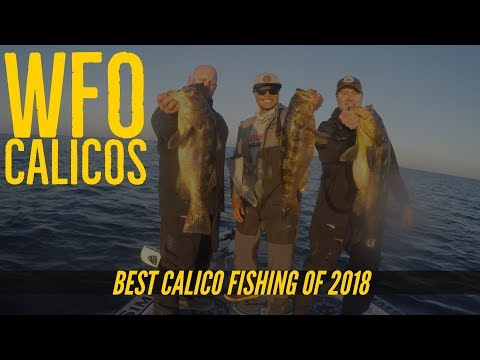 Ballast Point Fishing Team The Finale - Calico Bass Fishing At San Clemente Island