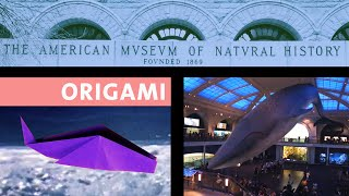 Origami At The Museum: Folding A Whale (Remix)