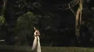 Ikaw Ang Aking Pangarap Martin Nievera ft Raki Vega